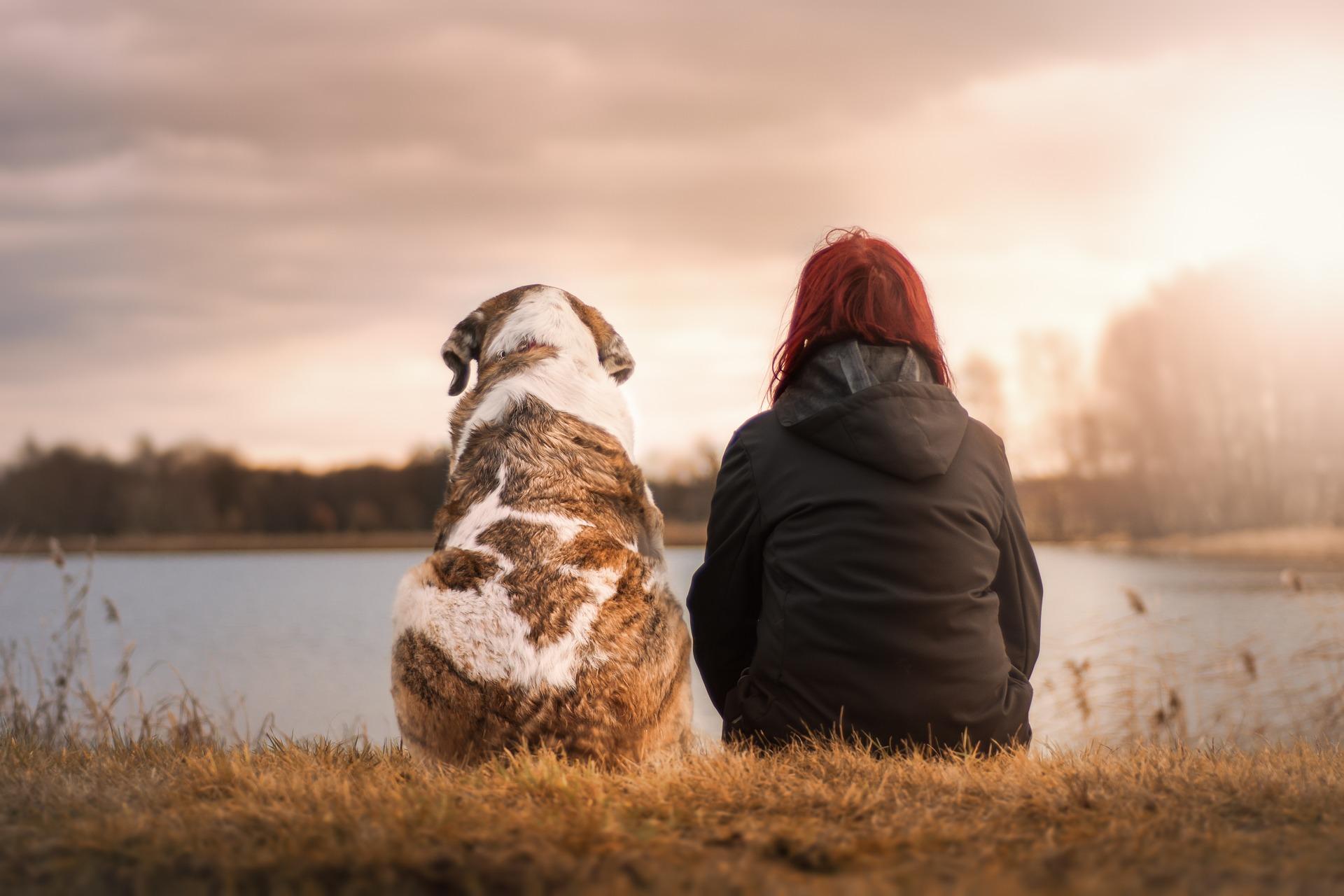 Pet Friendly Drug Rehabilitation Centers | The Recover